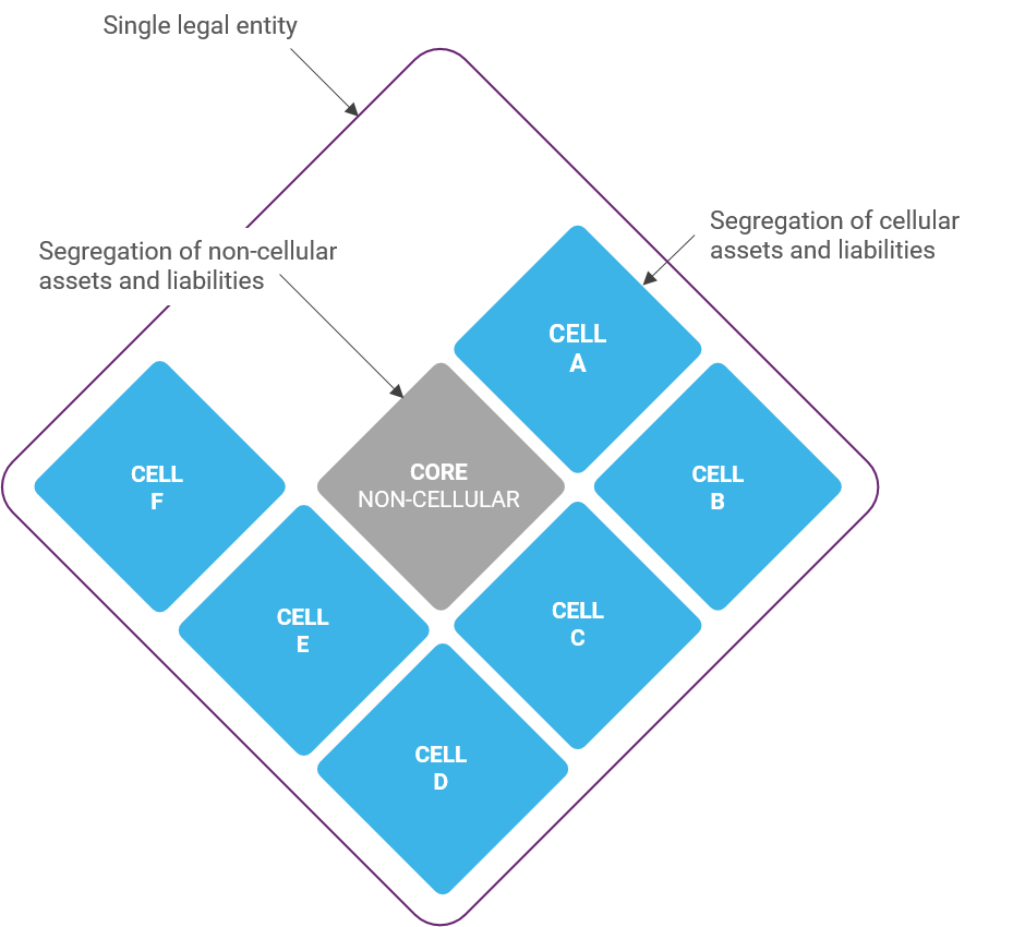 Protected Cell Company Structure - Sunibel Corporate Services